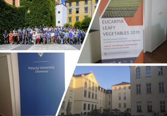 EUCAPIA Leafy Vegetables 2019