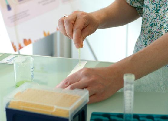 La 2ème édition de la Fête de la Science avec Nova Genetic